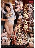 「なでしこが選んだ人気熟女優たちのヌキどころ 4時間16人!」のパッケージ画像