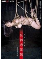「緊縛肉奴隷 中出し調教 小川みちる」のパッケージ画像