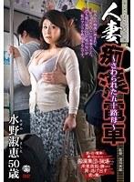 人妻痴漢電車〜さわられた五十路母〜 水野淑恵 ダウンロード