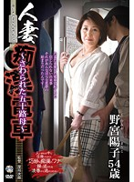 人妻痴漢電車〜さわられた五十路母〜 野宮陽子 ダウンロード