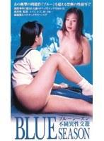 「ブルーシーズン 不純異性交遊」のパッケージ画像