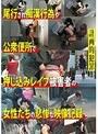 計画的犯罪 尾行され痴漢行為や公衆便所で押し込みレイプ被害者の女性たちの悲惨な映像記録