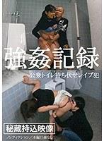 強姦記録 公衆トイレ待ち伏せレイプ犯 ダウンロード