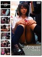 (h_101gs00001)[GS-001] 未成年(一○一)カラダの価格 少女と青い性 30 ダウンロード