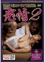 「発情 ひっそり息をひそめて性行為 2」のパッケージ画像