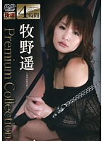 (h_115ydsw00001)[YDSW-001] Premium Collection 牧野遥 ダウンロード