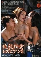 「近親相愛 レズビアン 3」のパッケージ画像