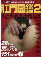 (h_166zukan014)[ZUKAN-014] 肛門図鑑2 ダウンロード