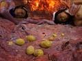 (h_173tggp00013)[TGGP-013] ヒロイン産卵 触手地獄 愛と正義の戦士 ジャスティーヌD 森下さくら ダウンロード 20