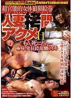 人妻拷問アクメ 11 ダウンロード