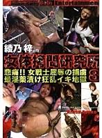 「女体拷問研究所 8」のパッケージ画像