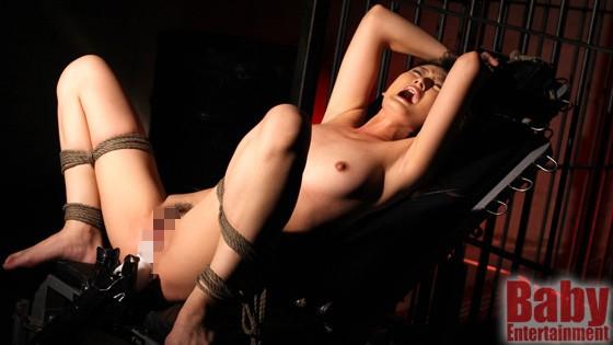極逝コレクター 悪魔の無限快楽拷問椅子 2 の画像2