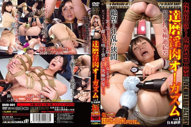 [DXID-001] 達磨淫肉オーガズム vol.1 有本紗世