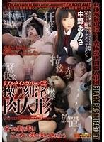 「リアルタイムラバーズ 2 操り刻淫肉人形 中野ありさ」のパッケージ画像