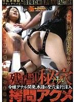 残虐!!秘穴(アナル)拷問アクメ ダウンロード