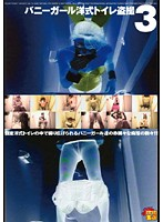 バニーガール洋式トイレ盗撮 3 ダウンロード