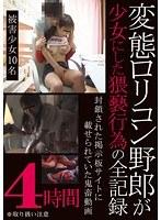 「変態ロリコン野郎が少女にした猥褻行為の全記録 4時間」のパッケージ画像
