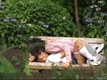 [LAED-149] 高○生カップル野外青姦盗撮 4時間