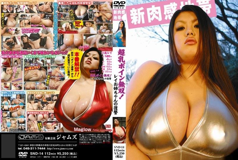 巨乳の姉、立花レイ出演の監禁無料動画像。超乳ボイン無双!