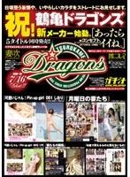 鶴亀ドラゴンズスペシャル ダウンロード