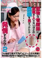 「堅物な看護師に尿瓶が入らないほどの巨根を見せつけたら発情するか? 2」のパッケージ画像
