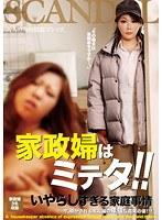 家政婦はミテタ!!いやらしすぎる家庭事情【cand-060】