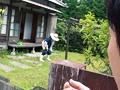 (h_254ofku00020)[OFKU-020] 茨城で農家の五十路おっかさんをナンパ丸かじり 岩下千恵 ダウンロード 1