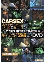 CARSEXが多いと評判の●●公園、□×埠頭、台●駐車場で張り込み盗撮したDVD ダウンロード
