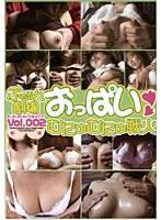 ぷるるん劇場 おっぱいむにゅむにゅ戦火 VOL.002 ダウンロード