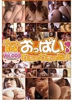「ぷるるん劇場 おっぱいむにゅむにゅ戦火 VOL.003」のパッケージ画像