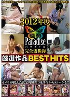 2012年度 パラダイス厳選作品BEST HITS ダウンロード