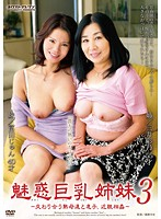 魅惑巨乳姉妹 3 貴方の熱いのちょうだい ダウンロード