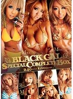 BLACK GAL SPECIAL COMPLETE BOX 240min ダウンロード