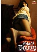Black Beauty いやらしい黒パンストの世界