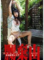 「嬲棄山 捕われた少女 3 あい」のパッケージ画像