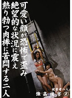 強姦被害 2