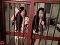 拘束監禁 2穴破壊 1