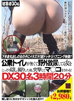 公衆トイレが無くて野外放尿してる女をこっそり隠し撮りした後、突撃してマ○コをさわる!DX