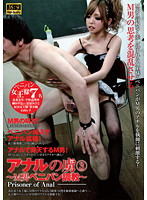 「アナルの虜 3 ~M男ペニバン調教~」のパッケージ画像