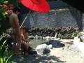 (h_307toj00302)[TOJ-302] G県山○温泉の貸切り露天風呂を利用するカップルたちは超大胆にチ○ポしゃぶってハメ放題!生々しく卑猥なので従業員から買い取って勝手に販売しちゃいます。 2 ダウンロード 8