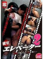 密室エレベーター 〜痴漢の魔の手が少女を襲う〜 2