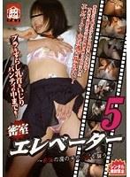 密室エレベーター 〜痴漢の魔の手が少女を襲う〜 5 ダウンロード