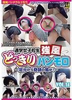 通学女子校生 強風どっきりパンモロ VOL.14 〜足元から奇跡の風が!〜 ダウンロード