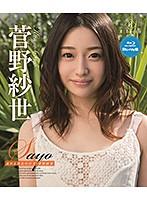 Sayo 流れる指先の行方 菅野紗世 ダウンロード
