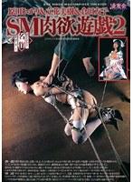 「アートビデオ名作シアター SM肉欲遊戯 2」のパッケージ画像