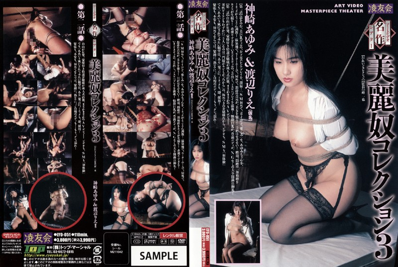 アートビデオ名作シアター 美麗奴コレクション 3