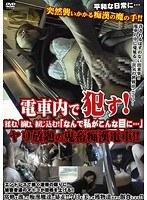 ヤリ放題の鬼畜痴漢電車!!
