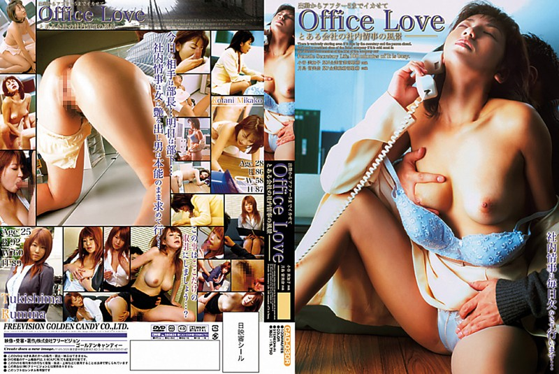 Office Love とある会社の社内情事の風景