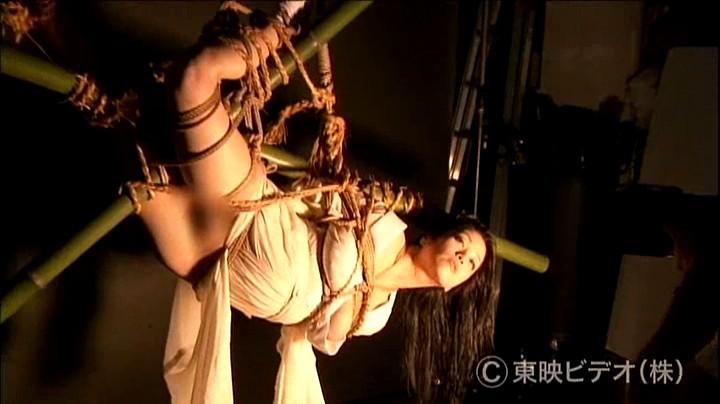 団鬼六氏原作の小向美奈子 蛇