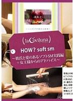 HOW? soft sm 彼氏と愛のあるソフトSM実践編+女王様からのアドバイス ダウンロード
